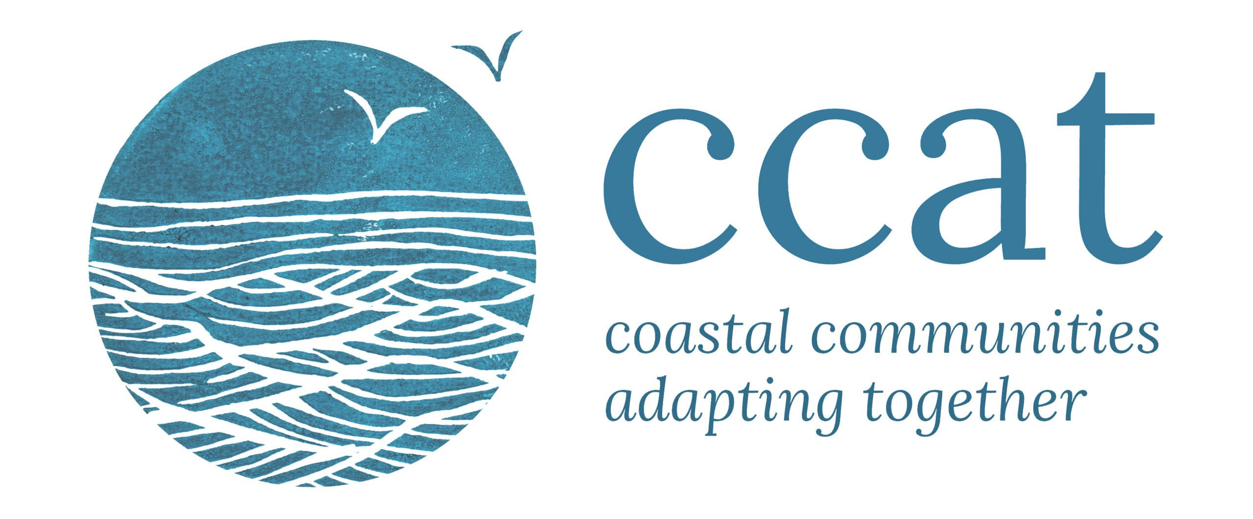 CCAT Project