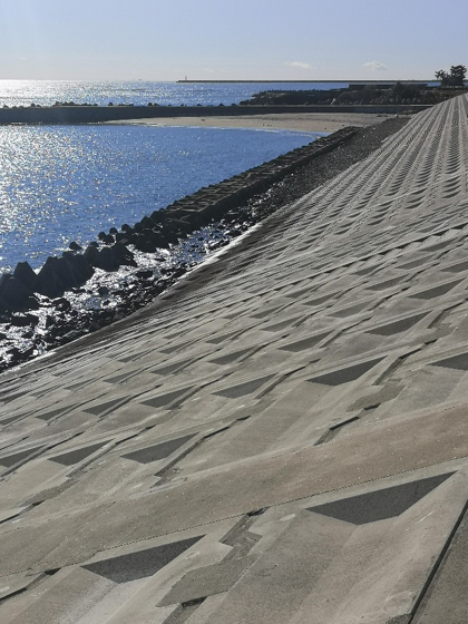 sea wall Japan climate change